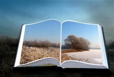 3 libro-vida-4