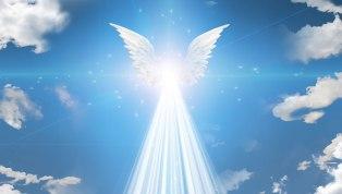 angel-12_n